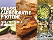 Copertina dell'articolo - Grassi carboidrati e proteine a confronto