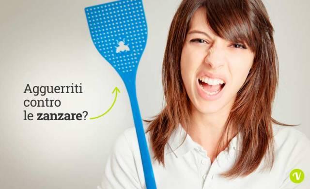 Come difendere la casa dalle zanzare - Zanzare in casa nonostante zanzariere ...