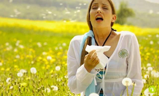 Allergie: i rimedi naturali