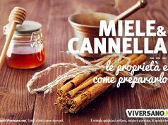 Miele e cannella: benefici e preparazione