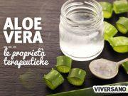 Aloe vera: proprietà, benefici e controindicazioni