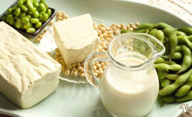 proprietà e benefici della soia