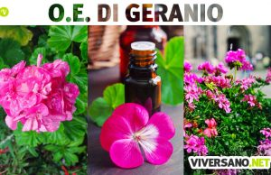 Olio essenziale di geranio: usi e proprietà
