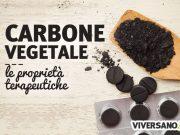 Carbone vegetale: proprietà, usi e controindicazioni
