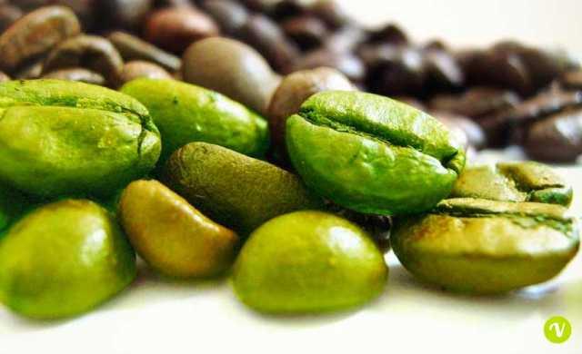 Risultati immagini per caffè verde crudo