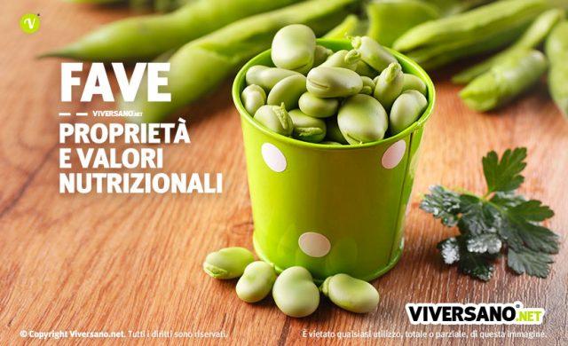 Fave fresche in un contenitore colorato di verde