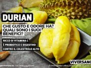 Durian: proprietà e benefici