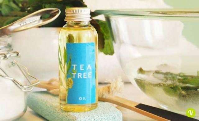 Tea tree: utilizzi per la cura della pelle