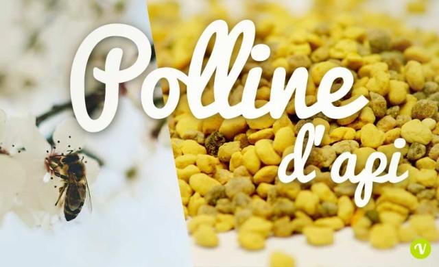 Polline benefici e proprieta