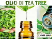 Tea tree oil: usi e proprieta