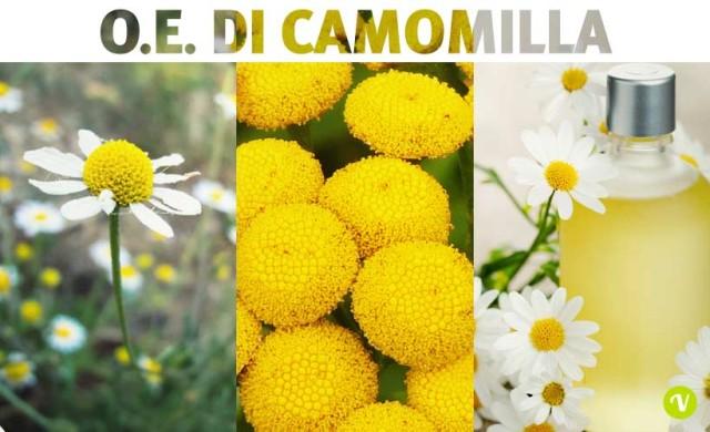 Olio essenziale di Camomilla