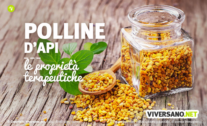 Polline d'api: uso, benefici e proprieta