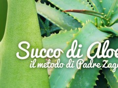 Succo di aloe arborescens - come prepararla secondo Padre Zago