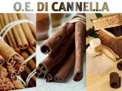 Olio essenziale di cannella: proprietà e usi