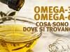Omega-3 e Omega-6: cosa sono e dove si trovano