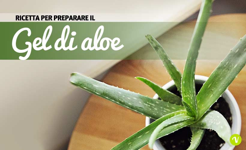 Come fare il gel di aloe vera