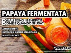 Scopri le proprietà della Papaya fermentata, un frutto tropicale dalle doti antiossidanti e digestive