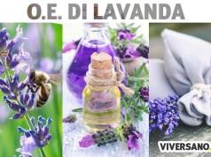 Olio essenziale di lavanda: benefici e usi in aromaterapia