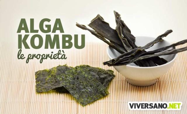 Alga Kombu: proprietà, usi e controindicazioni