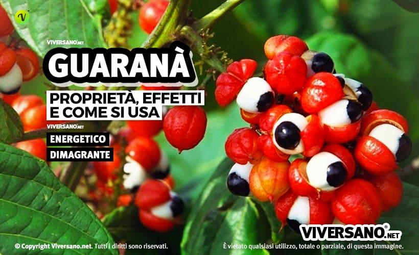 Guaranà: proprietà e utilizzi