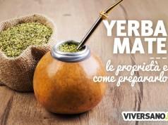 Yerba mate: proprietà, preparazione e controindicazioni