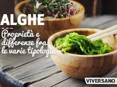 Alghe rosse, brune, verdi e azzurre: caratteristiche e benefici