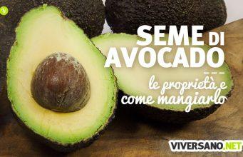 Copertina dell'articolo - Seme di avocado: i benefici e come si mangia