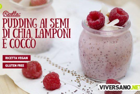 Pudding ai lamponi, semi di chia e cocco: ricetta vegan