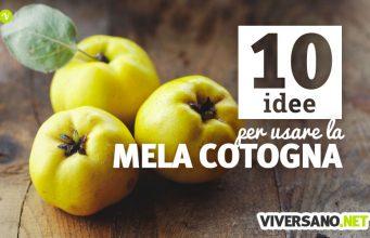 10 utilizzi delle mele cotogne in cucina