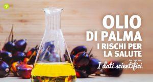 Olio di palma raffinato: composizione e rischi per la salute