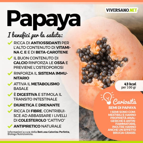 Populaire Papaya: le sue proprietà, i benefici e le controindicazioni PF22