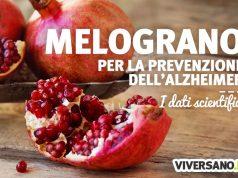 Melograno per prevenire l'alzheimer: i benefici e gli studi scientifici