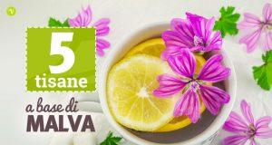 Tisana alla malva: 5 ricette per farla in casa