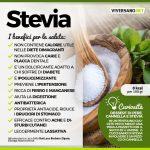 Infografica con i benfici della stevia