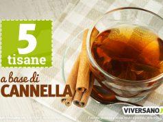 5 tisane alla cannella: ingredienti e ricette