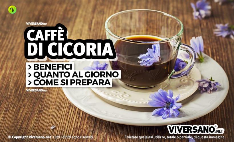 Caffè di cicoria: benefici, preparazione e acquisto