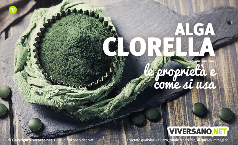 Alga chlorella: proprietà, benefici e controindicazioni