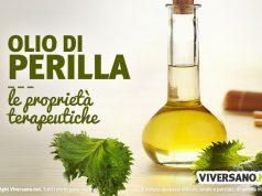 Olio di perilla: proprietà, benefici, usi e controindicazioni
