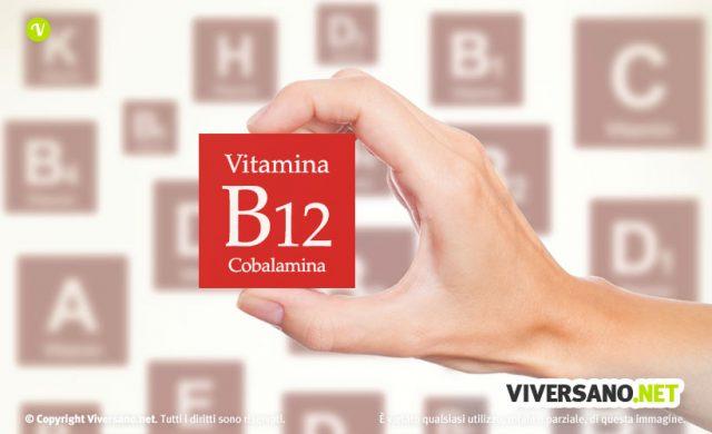 Vitamina B12: a cosa serve, proprietà, carenza e fonti alimentari
