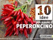 10 ricette piccanti per usare il peperoncino in cucina