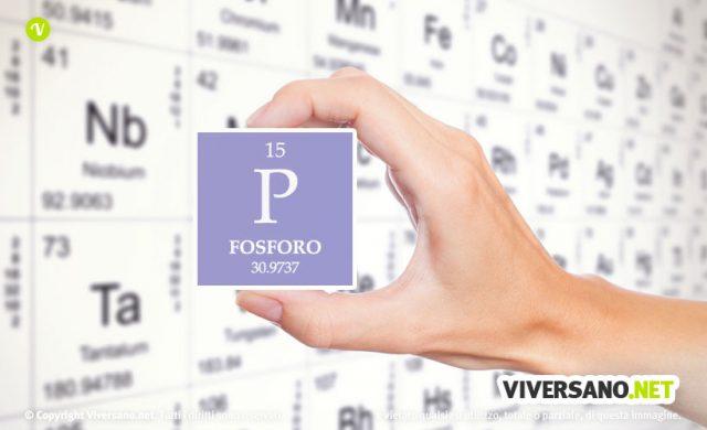 Fosforo: a cosa serve, sintomi da carenza e fonti alimentari