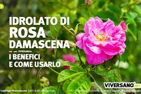 Idrolato di rosa damascena proprieta e uso in bellezza