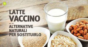 Latte vaccino come sostituirlo in cucina