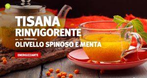 Tisana energizzante con olivello spinoso e menta