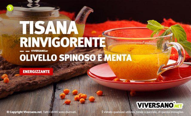 Tazza piena di tisana con olivello spinoso e menta