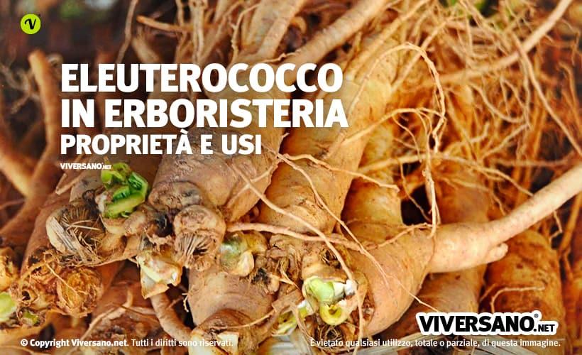 Eleuterococco in erboristeria