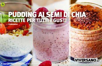 Ricette del Chia Pudding