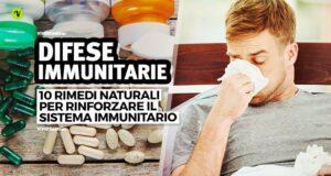 Rimedi per rinforzare il sistema immunitario